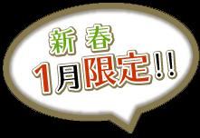 新春1月限定